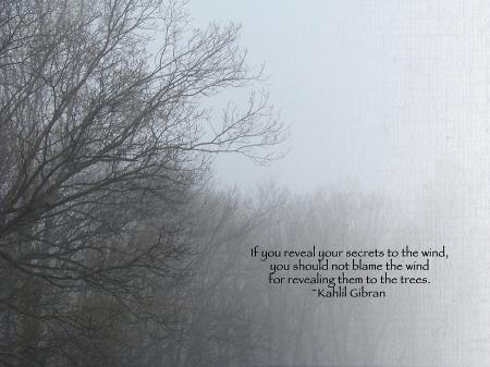 trees-and-fog-and-khalil-gibran-quote-carol-senske