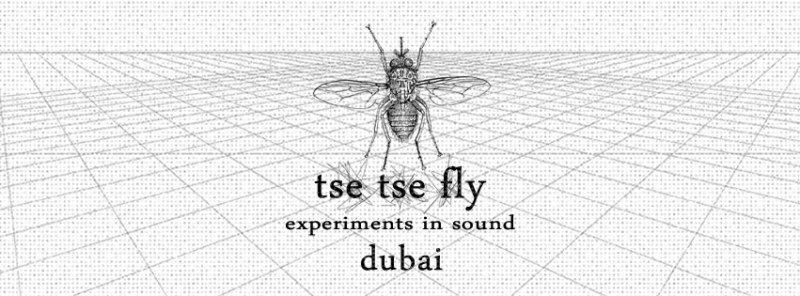 Tse Tse Fly - a night of sound art & experimental noise. Source