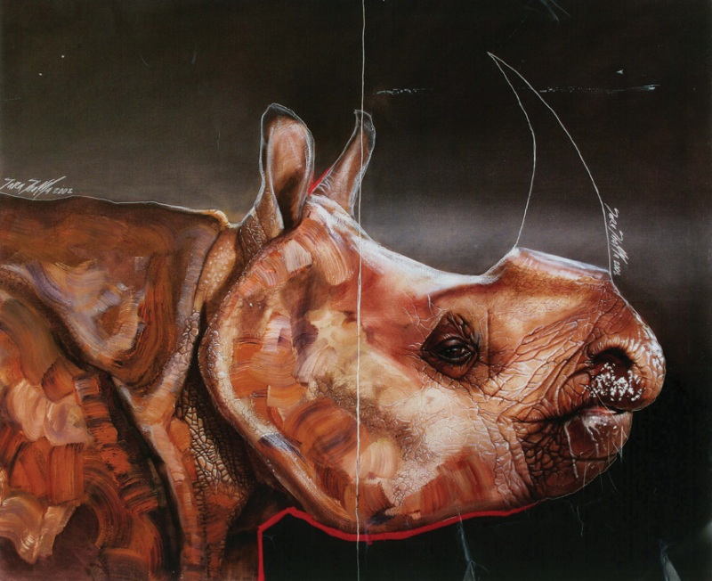 Rhinoceros Sara Shamma